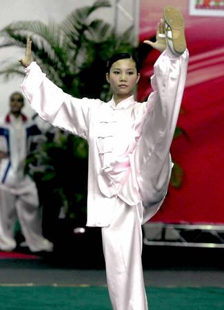 第七届世界武术锦标赛举行
