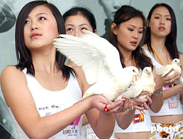 特选拔赛 模特手捧和平鸽祈盼和平