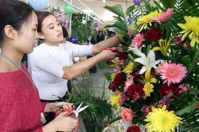 北京一家名叫金陆阳光的花鸟鱼虫市场在二环边