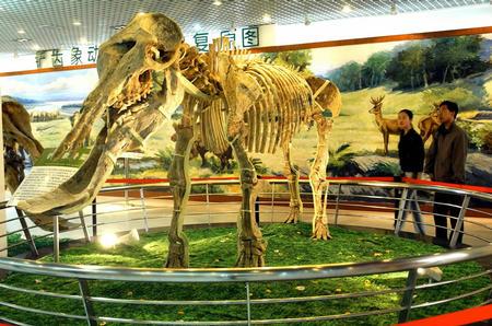 远古时代动物和政羊图片