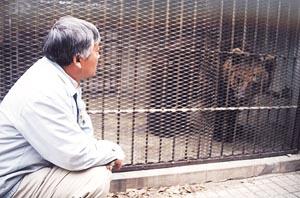 刘海洋伤熊事件结局_某著名高校学生下黑手硫酸泼向动物园黑熊(组图)