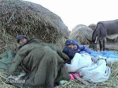 图文:村民睡在打麦场的草垛上