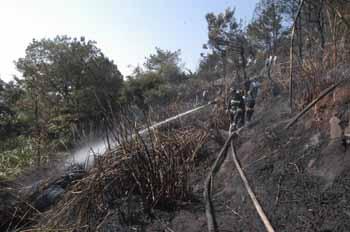 """新闻频道 国内    本报讯 昨日,福州风景秀丽的鼓山遭到""""火神祝融""""的"""