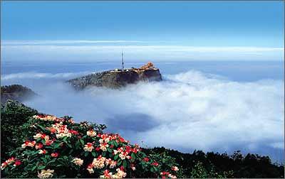 峨眉山市境内,核心景区面积154平方公里,主峰金顶3077米,最高峰万佛顶