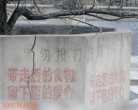 刘海洋伤熊事件结局_硫酸泼熊(2)图片硫酸泼熊(2)图片大全_社会热点图片_非主流图片站